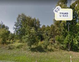 Morizon WP ogłoszenia | Działka na sprzedaż, Tarczyn, 14970 m² | 4296
