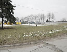 Morizon WP ogłoszenia   Działka na sprzedaż, Opole Kolonia Gosławicka, 6700 m²   7336