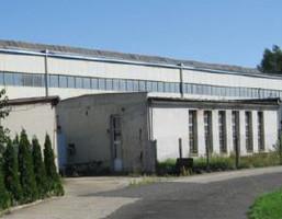 Morizon WP ogłoszenia | Fabryka, zakład na sprzedaż, Opole, 3918 m² | 8709