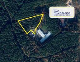 Morizon WP ogłoszenia | Działka na sprzedaż, Przejęsław, 9799 m² | 4189