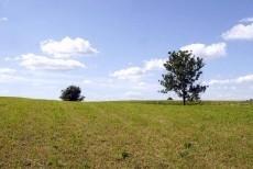 Rolny na sprzedaż <span>Olsztynski, Biskupiec, Labuszewo</span>