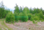 Morizon WP ogłoszenia | Działka na sprzedaż, Stare Budy Radziejowskie, 12000 m² | 3433