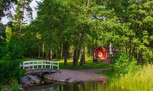 Obrót gruntami leśnymi – nowelizacja ustawy