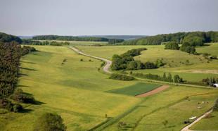 Działka rolna, budowlana, siedliskowa i rekreacyjna – czym się różnią?