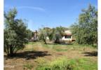 Działka na sprzedaż, Portugalia Ferreira Do Zezere, 9440 m² | Morizon.pl | 5185 nr4