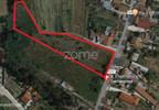 Działka na sprzedaż, Portugalia Ferreira-A-Nova, 5110 m² | Morizon.pl | 0873 nr2
