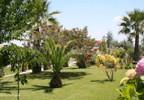 Działka na sprzedaż, Portugalia Ladoeiro, 30450 m² | Morizon.pl | 4735 nr15
