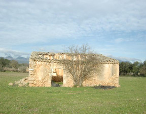 Komercyjne na sprzedaż, Hiszpania Sencelles, 19000 m²