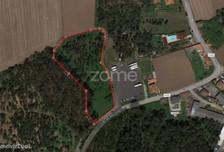 Działka na sprzedaż, Portugalia Modivas, 10930 m²