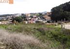 Działka na sprzedaż, Portugalia Santo Isidoro, 494 m² | Morizon.pl | 9624 nr11
